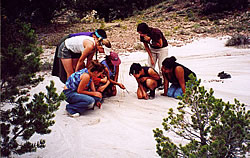 Dreamtracking—The girls and staff on some coyote tracks in a dry wash.