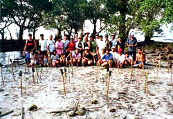 The Tracking Project and IID join the community on Samal Island to replant mangroves.